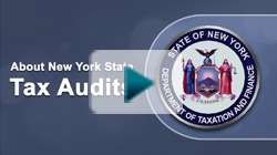About NY State Audit Process